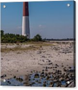 Barnegat Lighthouse Nj Acrylic Print