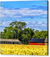 Barns In The Distance Acrylic Print