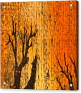 Barnwood Howl Acrylic Print