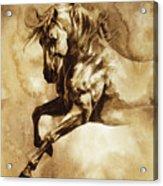 Baroque Horse Series IIi-i Acrylic Print
