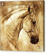 Baroque Horse Series IIi-iii Acrylic Print