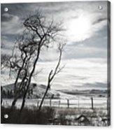 Barren Land Acrylic Print