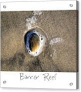 Barrier Reef Acrylic Print