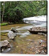Bartlett Experimental Forest - Bartlett New Hampshire Usa Acrylic Print