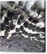 Basalt Rock Columns Formations Acrylic Print