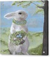 Basil Bunny Acrylic Print