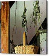 Basket And Drying Herbs Acrylic Print