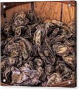 Basket Full Of Oysters Acrylic Print
