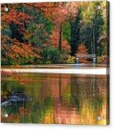 Pond In Autumn Acrylic Print