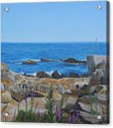 Bass Rocks Gloucester Acrylic Print