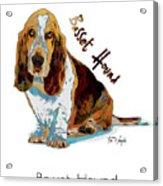 Basset Hound Pop Art Acrylic Print