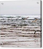Bastendorff Beach Acrylic Print