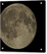 Bat Flying Past The Full Moon Acrylic Print