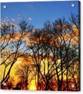 Battery Park Sunset Acrylic Print