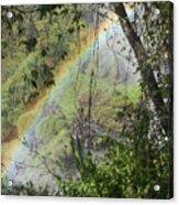 Beauty In The Rainforest Acrylic Print