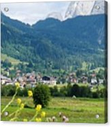 Bavarian Alps With Village And Flowers Acrylic Print