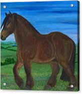 Bay Horse Acrylic Print