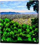 bcsp Pan Acrylic Print