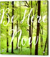 Be Here Now Green Forest In Spring Acrylic Print