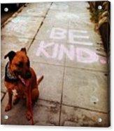 Be Kind Acrylic Print