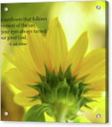 Be Like The Sunflower Acrylic Print