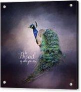 Be Proud - Peacock Art Acrylic Print