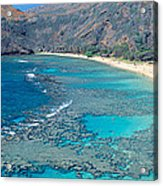 Beach And Haunama Bay, Oahu, Hawaii Acrylic Print