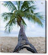 Beach Coco Acrylic Print