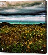 Beach Flowers Acrylic Print