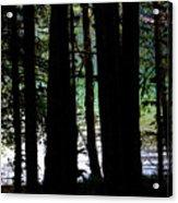 Beach Forest Acrylic Print