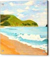 Beach In Brazil Acrylic Print