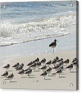 Beach Mantra Acrylic Print