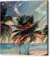 Beach Palms - Multi 9a Acrylic Print