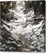 Beach Park Storm Drain Acrylic Print