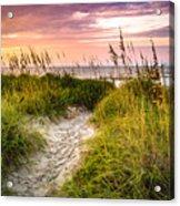 Beach Path Sunrise Acrylic Print