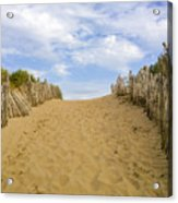 Beach Path To The Sea Acrylic Print