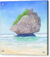 Beach Rock  Acrylic Print