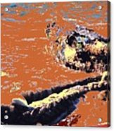 Beach Rope Acrylic Print