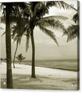 Beach Scene In Key West Acrylic Print