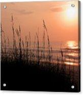 Beach Sun Acrylic Print