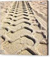 Beach Tracks Acrylic Print