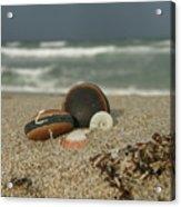 Beach Treasures 1 Acrylic Print