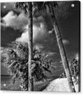 Beach Walk - Port Charlotte Beach Park, Florida Acrylic Print