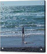 Beachcomber Acrylic Print