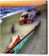 Beached Beauty Acrylic Print by Dan Carmichael