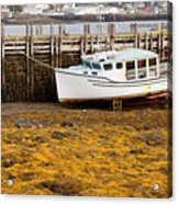 Beached Boat During Low Tide In Nova Scotia Canada Acrylic Print