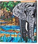 Beaded Elephant Acrylic Print
