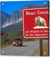 Bear Country In Montana Acrylic Print