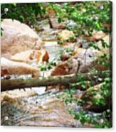 Bear Creek Cheyenne Canyon Acrylic Print