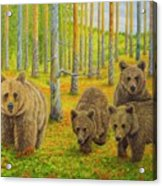 Bear Family Acrylic Print
